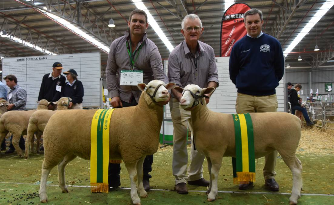 Scott and Doug Mitchell, Rene stud, Culcairn, NSW, with their grand champion and reserve champion ewes, with judge Chris Badcock, Tas.